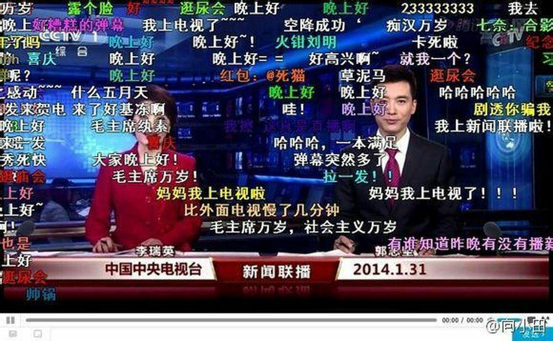 Chinese Consumer Behavior: Danmu Video